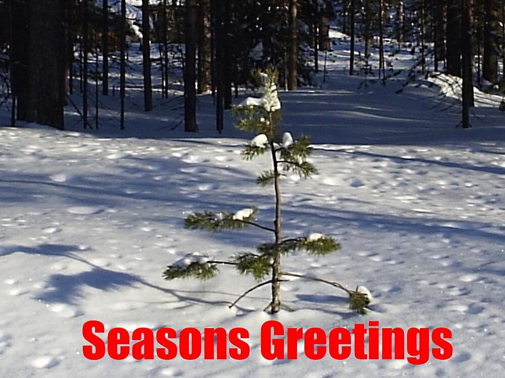 Christmas Card by Fliptop99