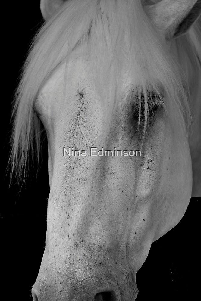 The Grey by Nina Edminson