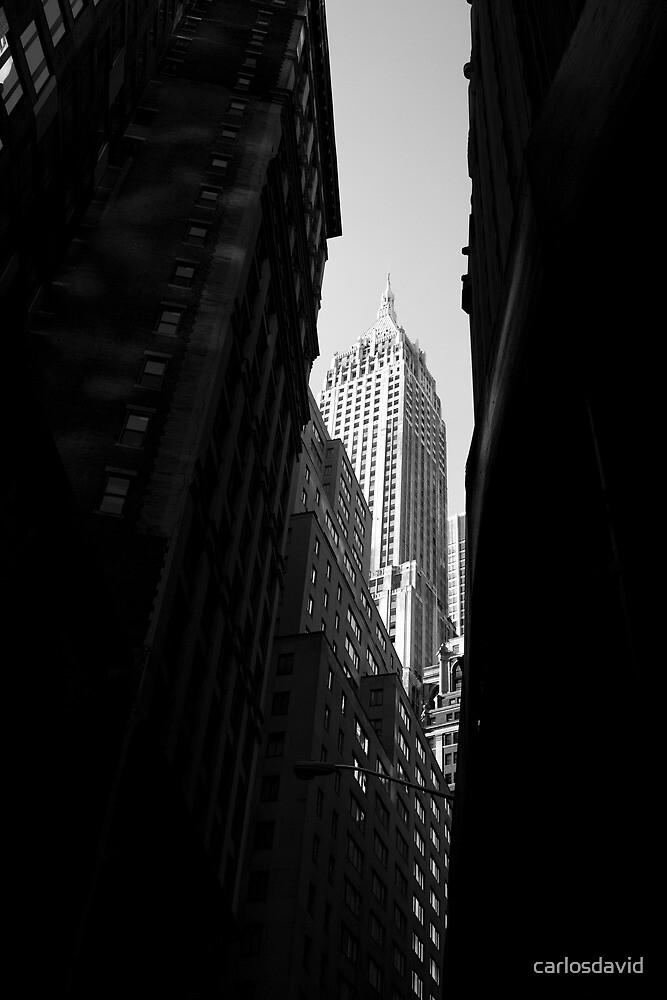 Downtown New York 02 by carlosdavid