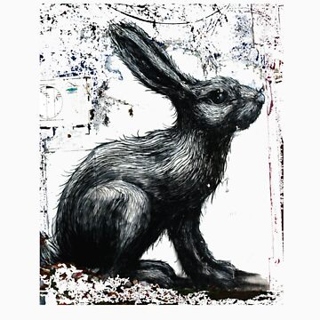 ROA Graffiti Artwork, Rabbit by samchamberlaine