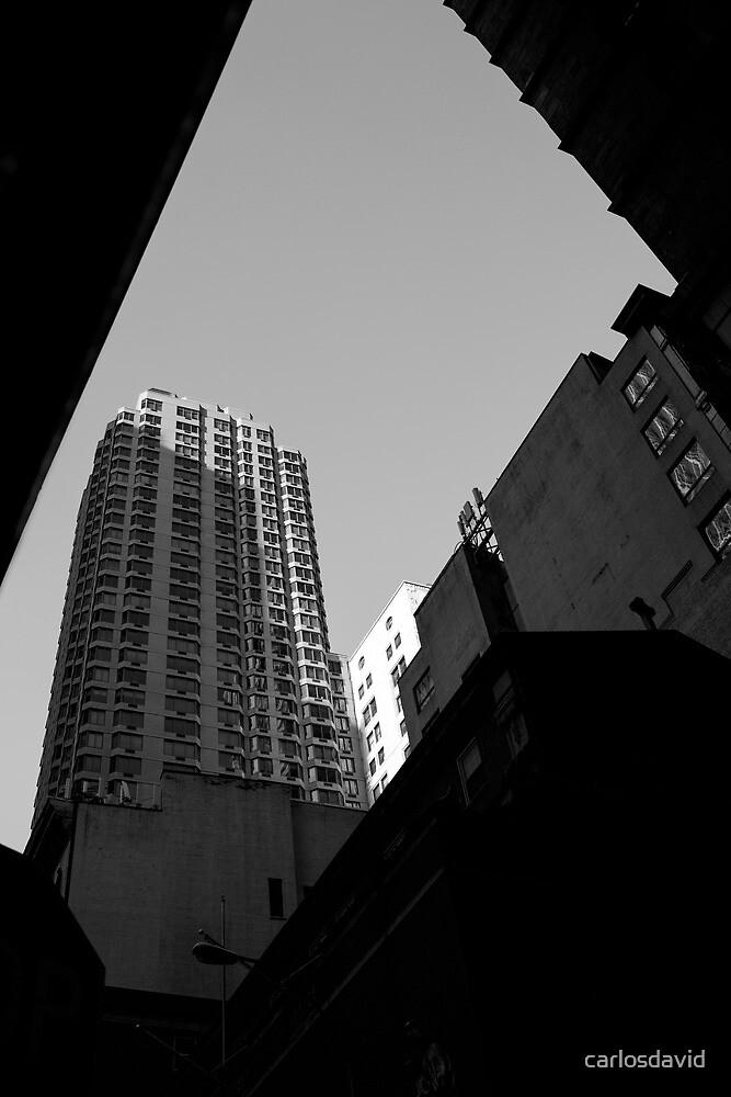 Downtown New York 06 by carlosdavid