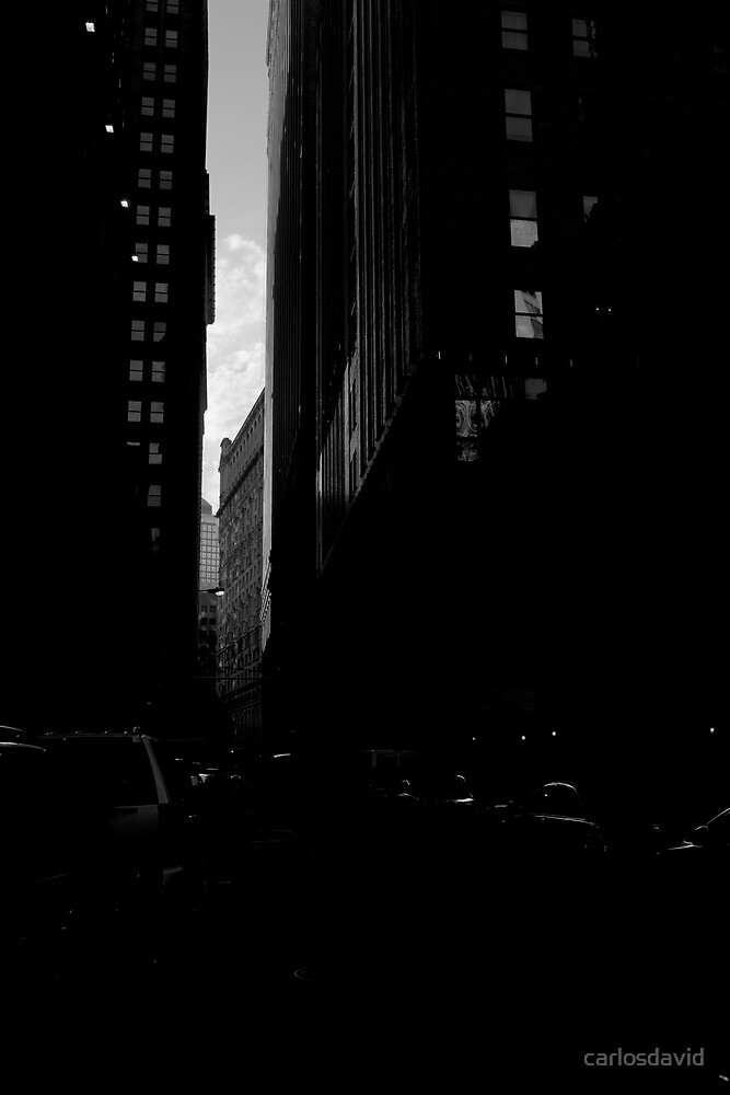 Downtown New York 09 by carlosdavid