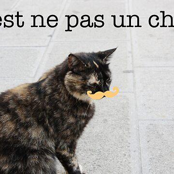 C'est ne pas un chat. by HollieBumble