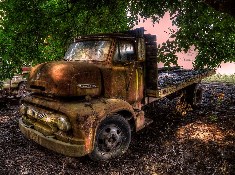 Out Of The Past ~ 1953 Ford C-600 by Charles & Patricia   Harkins ~ Picture Oregon