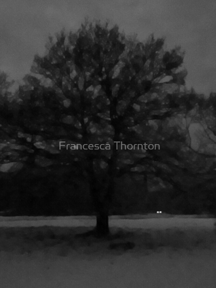 Snowy Evening by Francesca Thornton