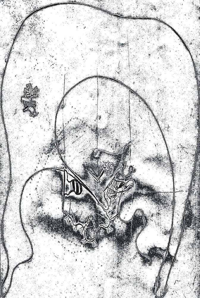 jaro koco : sivec luka by verivela