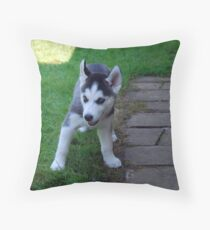 Sly...Or Shy? Throw Pillow
