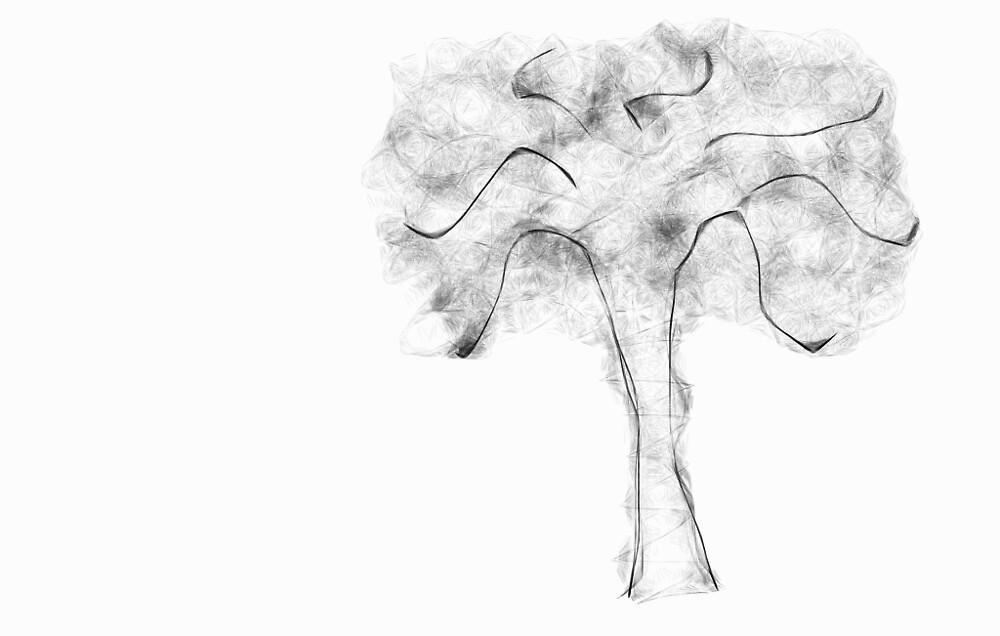 zimaul : strom by verivela