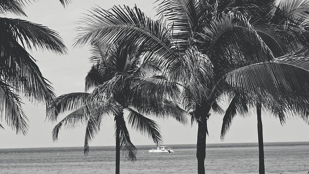 Island Riches by eurodak