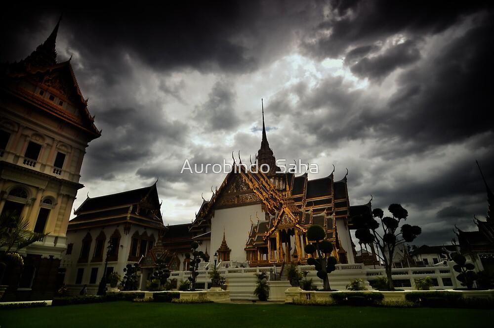 Castle by Aurobindo Saha