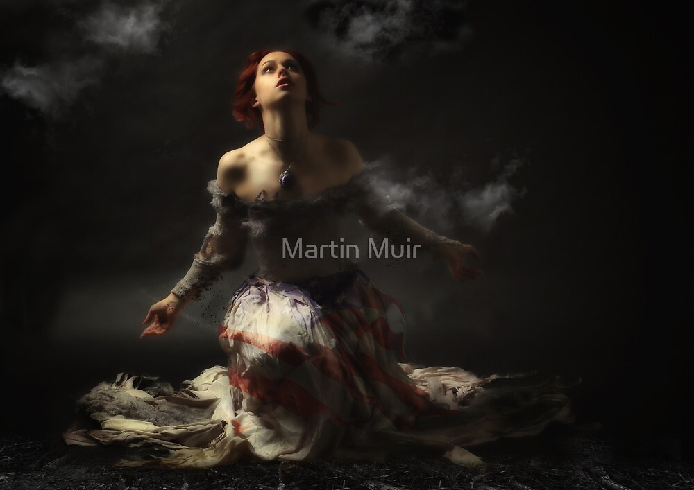 The Patriot by Martin Muir