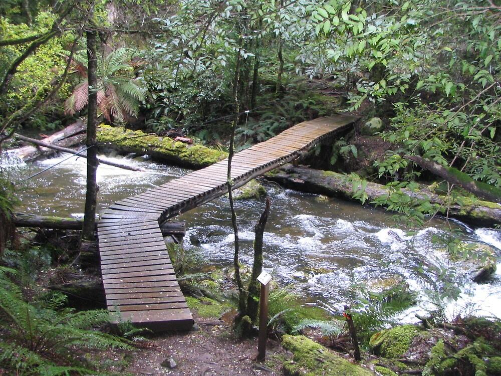 Old Creek Bridge by Throughmyeyes13