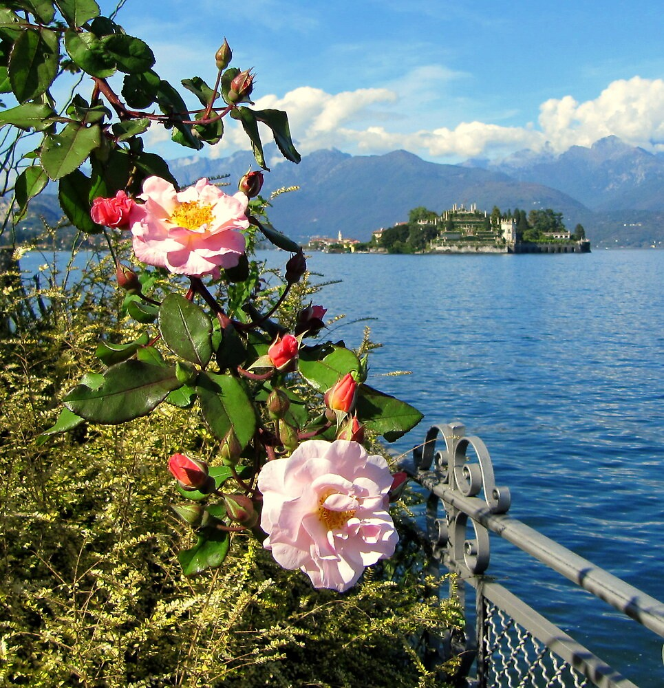 Lake Maggiore, Italy by elvines