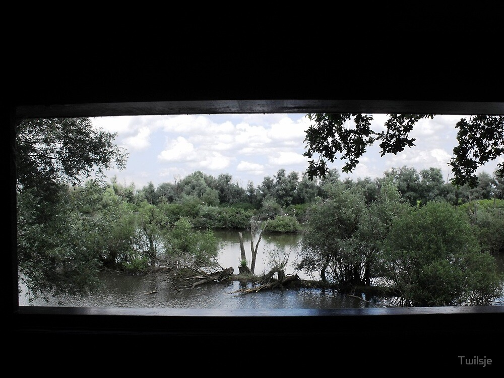 The view. by Twilsje