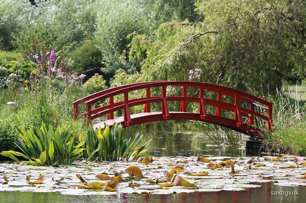 Bridge over lillies by saxbyvuk