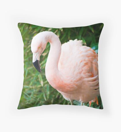 Birds of A Feather #1 Throw Pillow