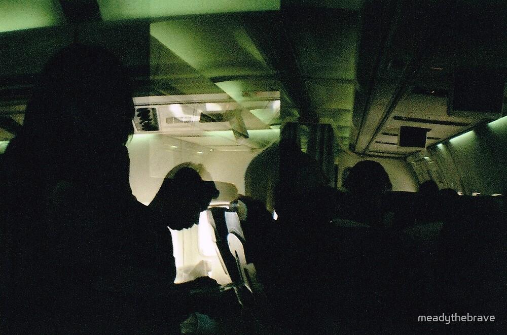 Plane to New York 2 by meadythebrave