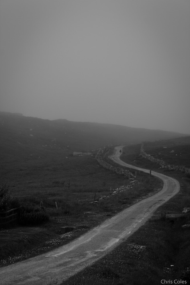 Misty Staney Hill by ccoles