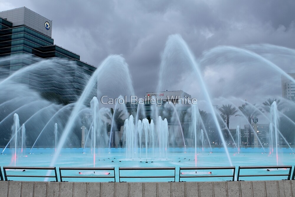 Stormy Weather at Friendship Fountain by Carol Bailey-White