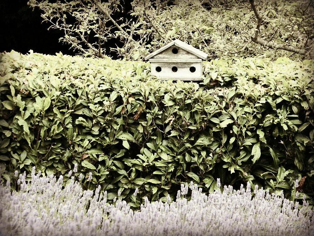 Hedge Birdhouse by kchase