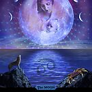 The Moon (w/description) by Doctorda