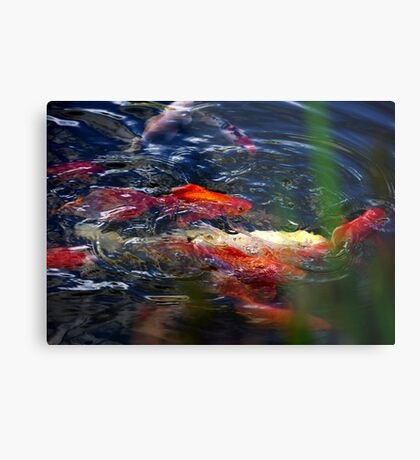 Fish dance Metal Print