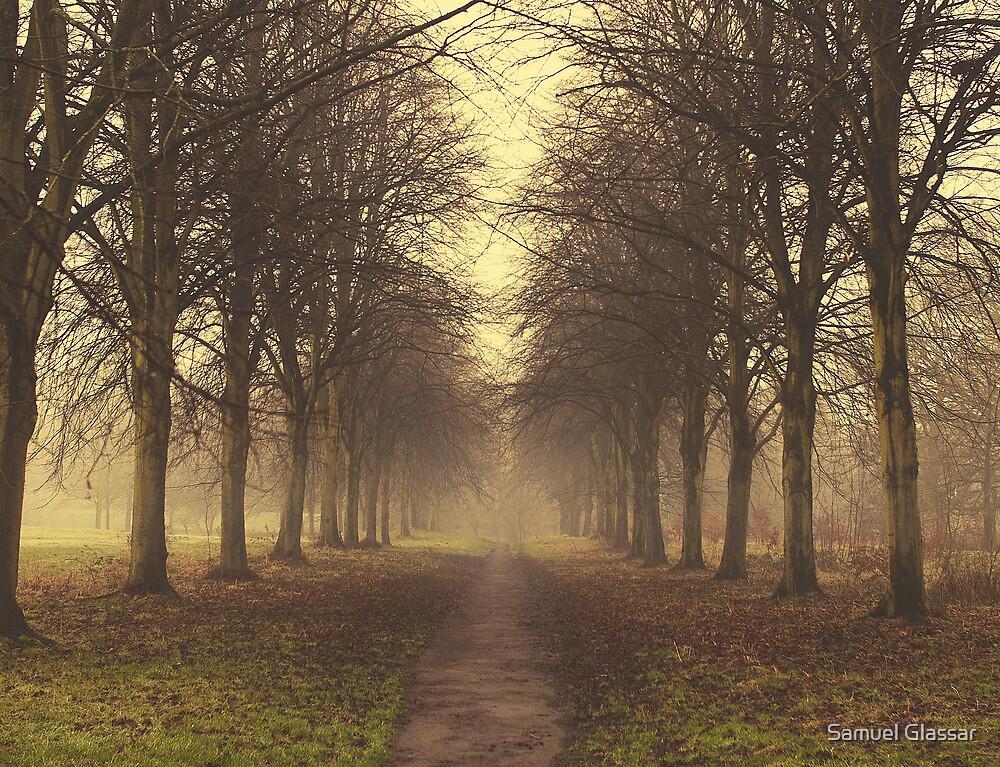Misty path by Samuel Glassar
