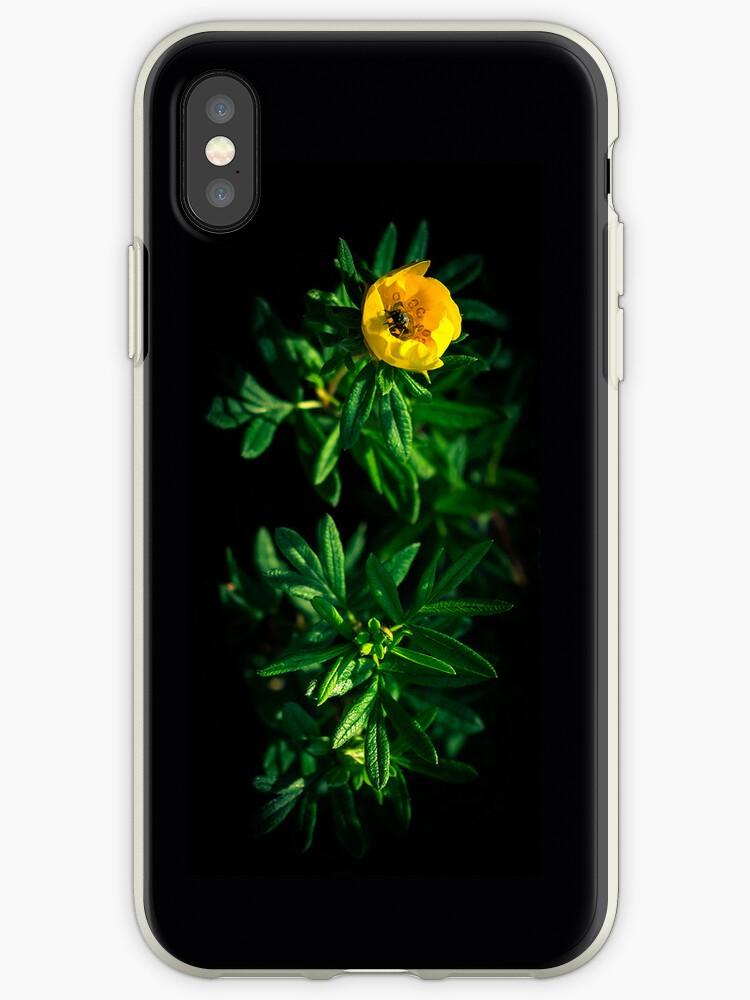 Nutrition - iPhone - flipped by Matti Ollikainen
