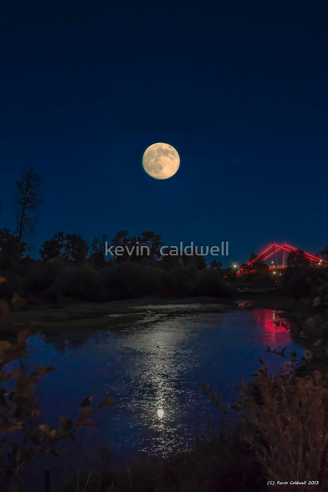 delta moon by kevin  caldwell