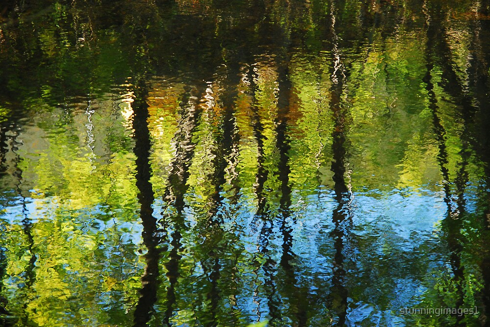 Dreaming of Monet by stunningimages1