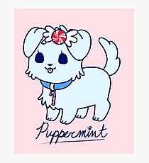 Sweet Treat Friends - Puppermint the Dog Photographic Print