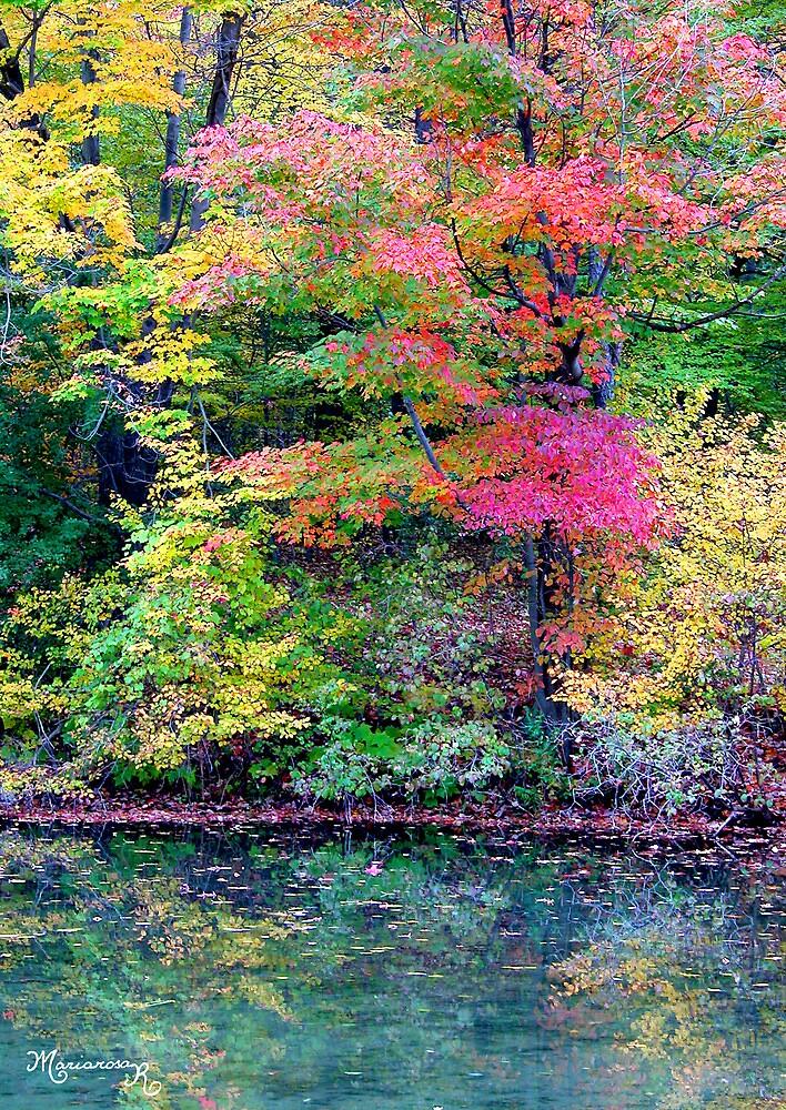 Glorious Autumn by MariarosaR