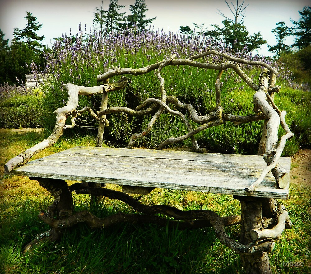 Wood Bench by kchase