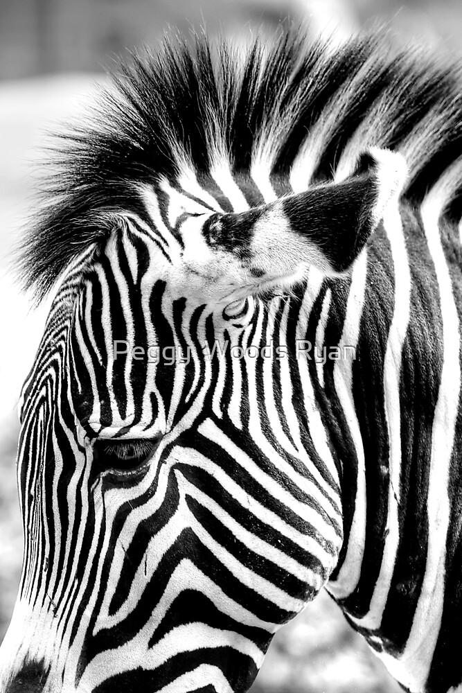 Detail, Zebra by Peggy  Woods Ryan