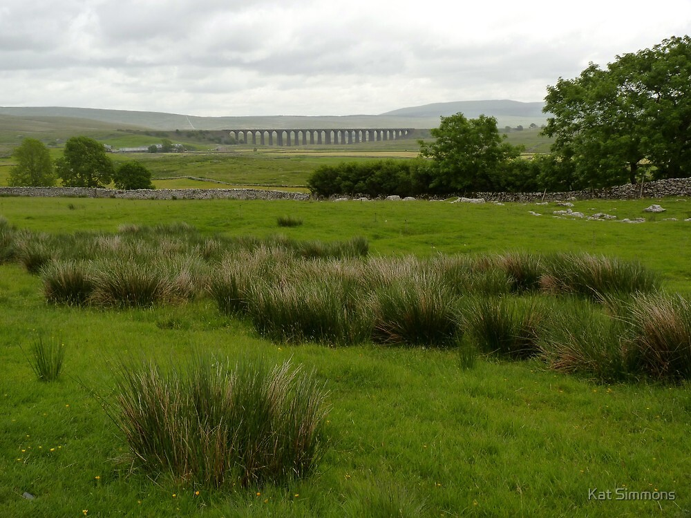 Ribblehead View by Kat Simmons