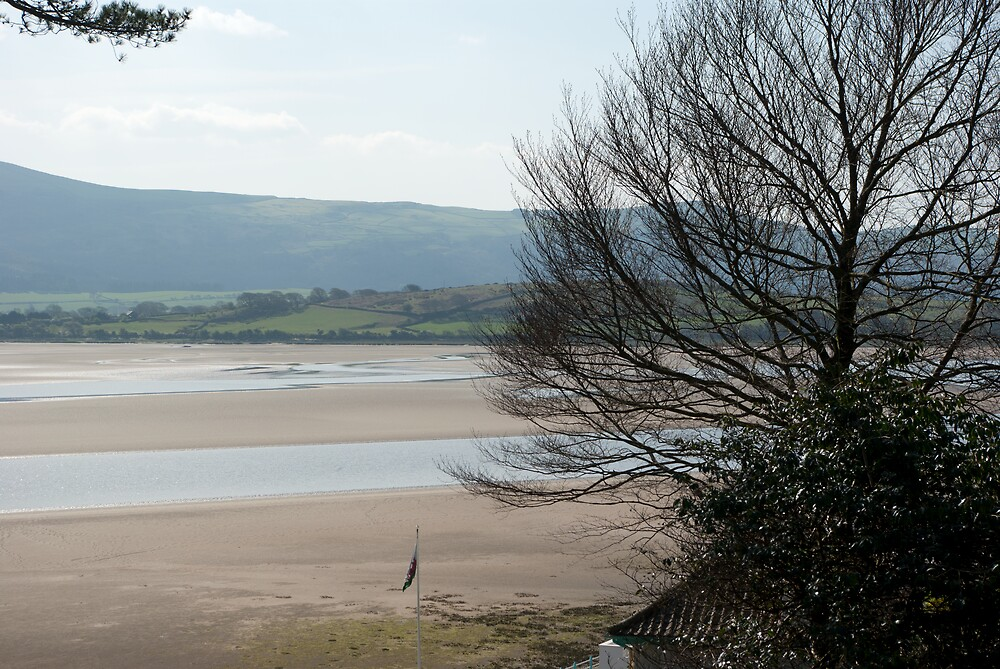 The Estuary seen from Portmeirion by Kevin Cartwright