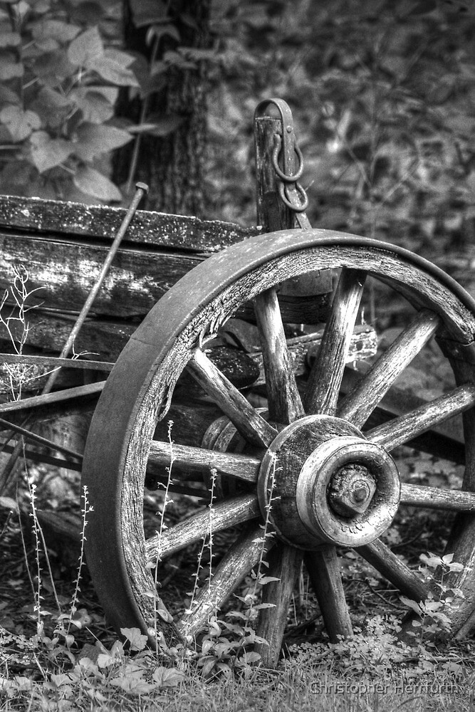 Wagon Wheel by Christopher Herrfurth