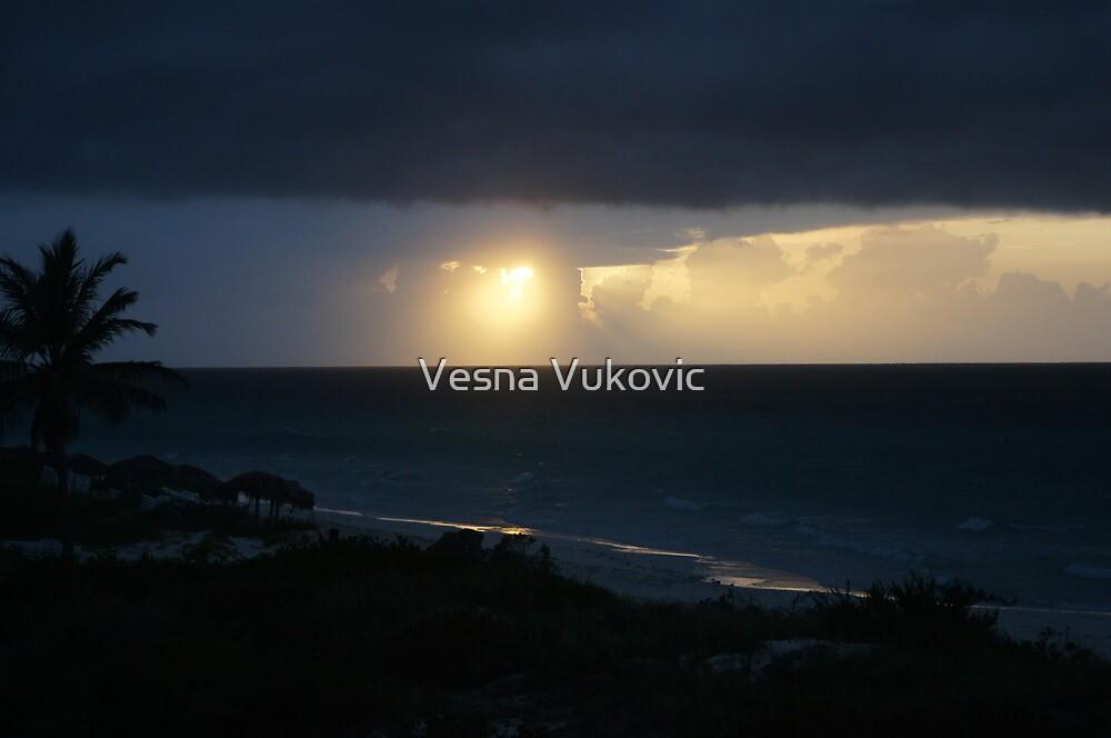 Enlighted by Vesna ©