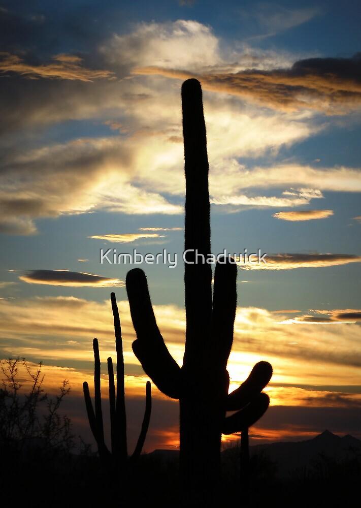 Saguaro Silhouette at Sunset  by Kimberly Chadwick