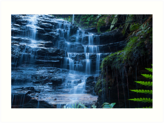 Cataract Falls and Leaf by Jeanne Kinninmont
