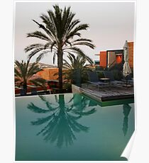 Palm Tree Reflection Poster