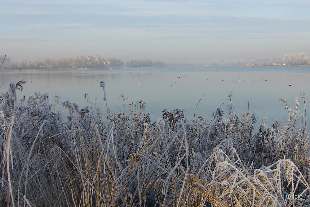 Winter view. by Twilsje