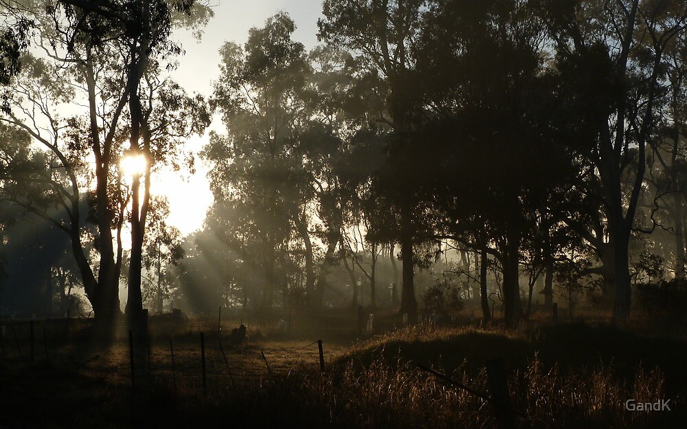 Morning Rays (Colour) by GandK