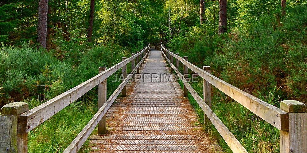ELGIN TORRIESTON WALKS BRIDGE by JASPERIMAGE