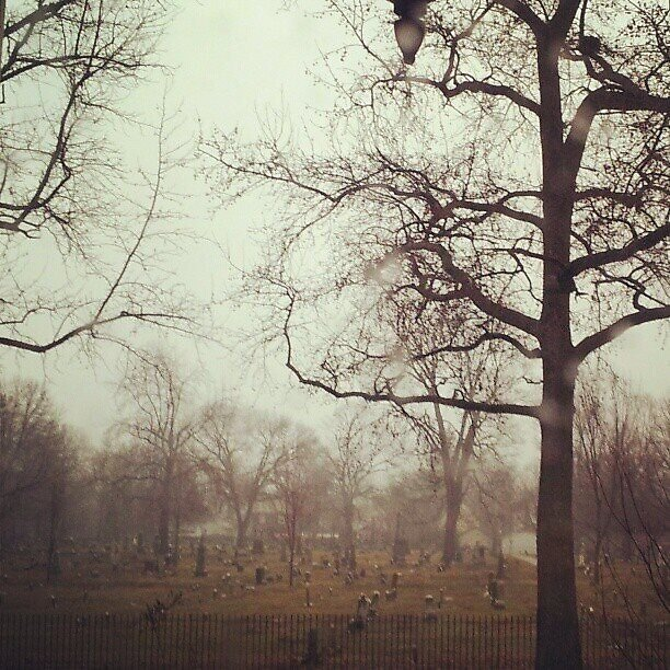 Cemetery in the mist by Kate Shuker