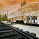 Trolley Undercover, Perris CA by Larry Costales