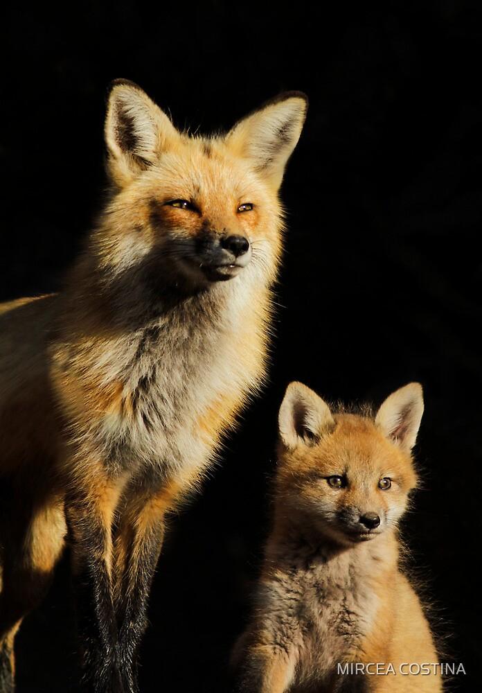 Family Portrait by MIRCEA COSTINA