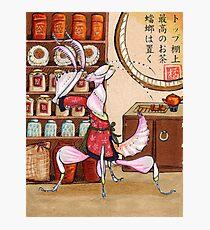 Mantis Tea Shop Print Photographic Print