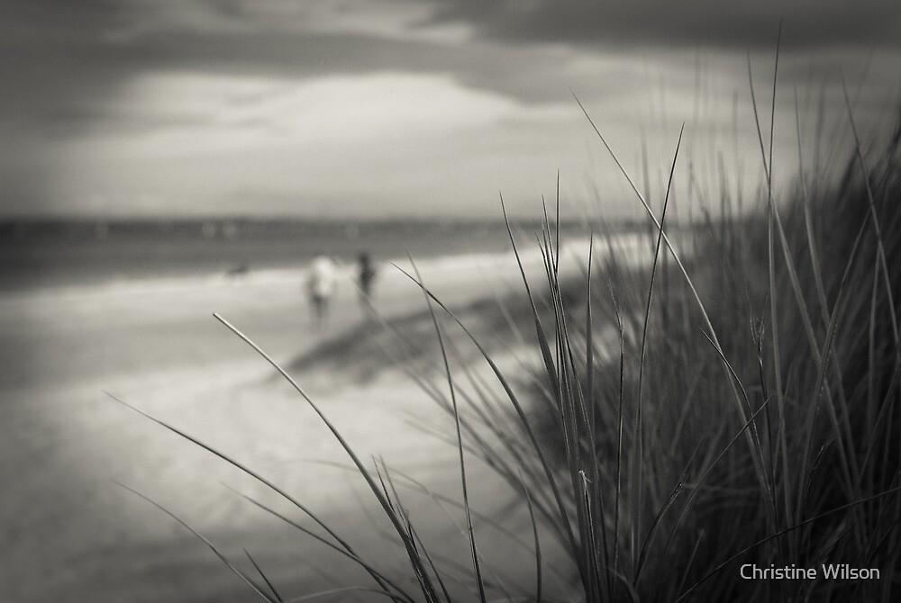 On the beach by Christine Wilson