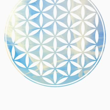 flower of Life by redblackberries